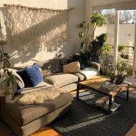 Two pups, a heap of plants & a bright & sunny Venice Beach loft