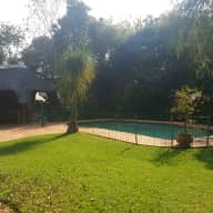 Spacious family home with one dog, two cats and two cockatiels, Johannesburg 15-26 March 2018