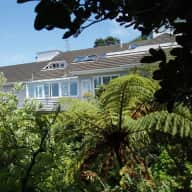 Caring for a seven year old cat called Habibi in Kelburn, Wellington