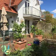 We are looking for a house / cat sitter here in Haimhausen!