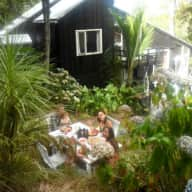 House sitter and animal lover needed in the Waitakere Ranges, Laingholm near Auckland, NZ
