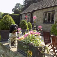 Dog Lovers for Barn Conversion nr Peak District