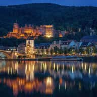 Petsitter in Heidelberg for Regular Travelers