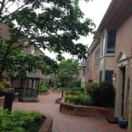 Minutes from Washington, D.C. Nice Townhome Needs Loving Cat Sitter