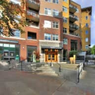 Awesome Seattle condo in a walkable neighborhood with 2 sweet low-maintenance cats.