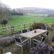 Dog sitter needed for two spaniels in lovely rural Dorset in September