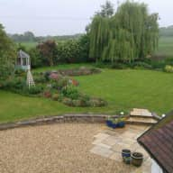 Dog and House Sitter in Rural Location
