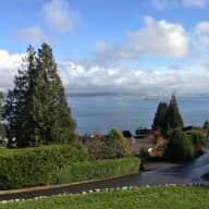 Bainbridge Island couple need great sitter for mini dachsund