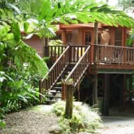 If you love the rainforest this house sit is for you