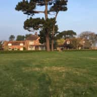 dog and house sitter required for West Sussex