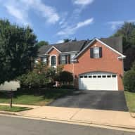 Large house with two cats close to Washington DC