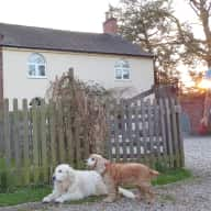 Molly and Jess require a sitter in the village of Bonehill, Staffordshire, England.
