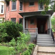 Toronto. Comfortable house and garden downtown with one easy dog.