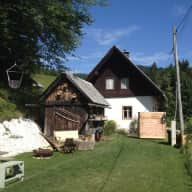 Our beautifully situated country cottage (in the hills of the Triglav National Park) relies on a wood fire to keep it warm. Our two rescue cats need company and a human to keep their home fire burning. We travel quite frequently and would like to find a cat sitter for our longer trips away.