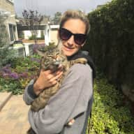 Need House & Cat Sitter in San Diego