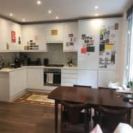 Husky-loving house sitter needed for central London flat