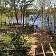 Pet and Home sitter needed in lakeside home in Falls Church, VA (Lake Barcroft) during the weekend of June 24-26, 2016