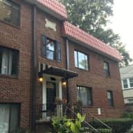 House and pet sitting in the heart of Midtown Atlanta