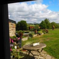 House and Pet sitter needed for 10 days in Dorinne Belgium. From 1st till 11th of July 2017