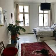 Looking for a cat sitter in Kreuzberg
