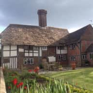 An opportunity to stay in a Medieval house to look after our English Springer Spaniels George and Tod