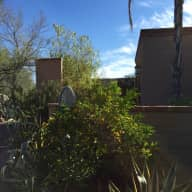 Sitter Needed for Wonderful Tucson Home