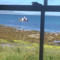 Pet sitter needed on Shapinsay (Orkney)