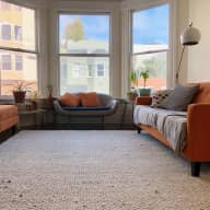 Easy going dog at a lovely Noe Valley home
