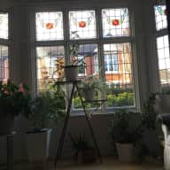 House sitter required in south Manchester