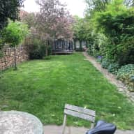 Spacious West London Shepherds Bush -  Family House - 3 Gorgeous medium sized dogs