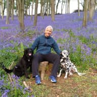 Easter stay in the vibrant city of Bristol with 2 friendly dogs