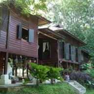 Catsit in Kedawang, Langkawi  with wildlife and nature
