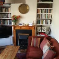 House sit with two dogs near historic Oxford