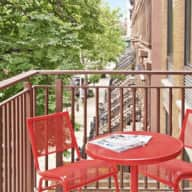 Harlem boutique condo with 2 lovely pups!