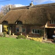 Thatched house close to New Forest with ponies and dogs