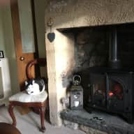 Percy the cat would like you to share his cozy cottage