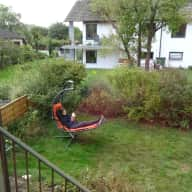 last minute sit: a few days (flexible) in Bavaria (4 cats, lots of veggies)