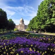 House and Pet Sitter Needed in the Heart of the Bluegrass State