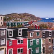 Require house/dog sitter in St. John's, NL approx 2 months