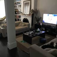 House and dog sitting/ walking