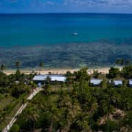 A Tonga holiday