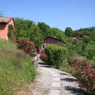 House and pet sitting in sunny mt idyll in Tuscany
