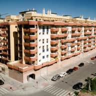 Dog sitter required in sunny Málaga city for Rico