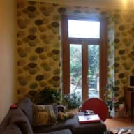Central Edinburgh, flat with garden and small dog who needs cuddles!