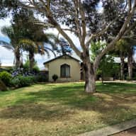 Hovea Cottage in Margaret River wine region with three affectionate fur babies