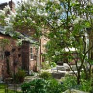 Lovely house, garden, cat and fish in need of looking after