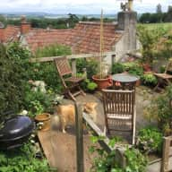 Short term stay, lovely Sheltie & Cottage in Somerset ...