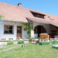 House with pool in the wine growing region of Hungary.  Balaton uplands. Perfect for cycling and hiking. 3 dogs, 3 cats, 4 chickens