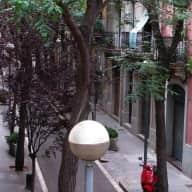 Cat Aruna and her cozy flat near the Sagrada Familia