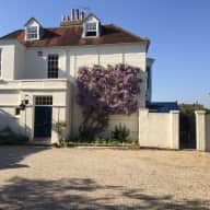 Sitter for one lovely old dog and spacious house just North of Chichester at the edge of Goodwood and South Downs